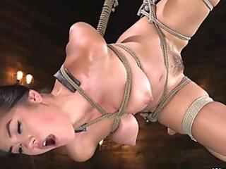 Sexy bdsm lover masturbates to an intense orgasm while restrained