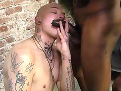 Twink rides black cock